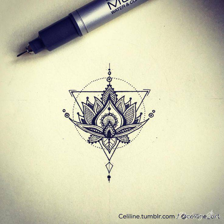 Kwiat Lotosu Znaczenie I Symbolika