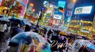 Kultura i społeczeństwo Japonii