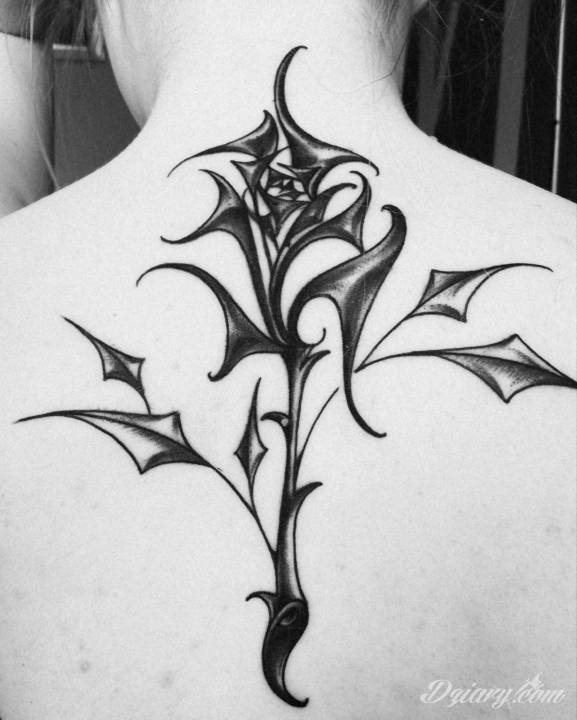 Jak Długo Mieć Zafoliowany Tatuaż Tatuaże Forum