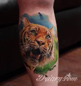 Podrzucam kilka tygrysów.