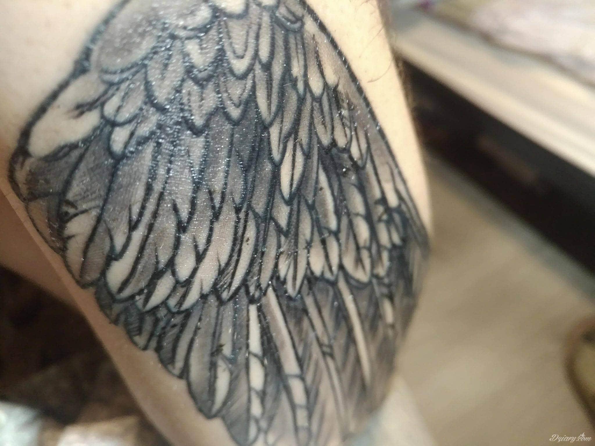 Czy To Jest Normalne Przy Gojeniu Tatuaże Forum
