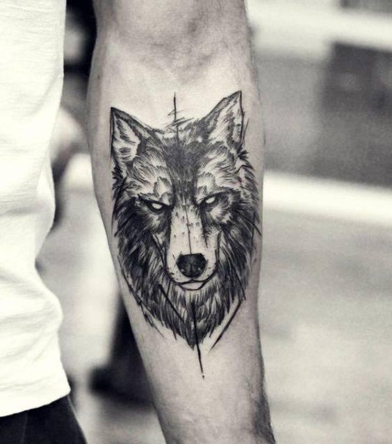 Wycena Wilka Tatuaże Forum