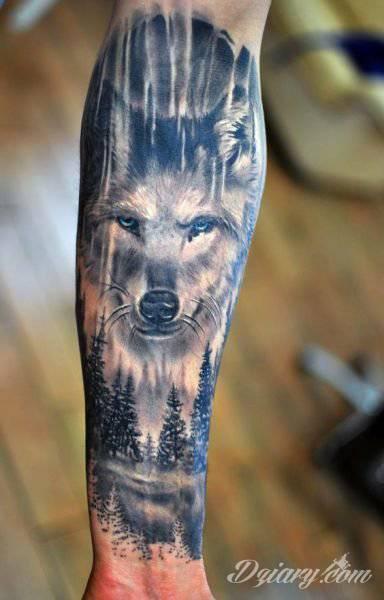 Tatuaż Wilk Cena Tatuaże Forum