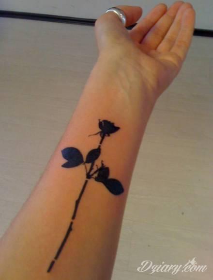 Róża Na Przedramieniu Forum O Tatuażu