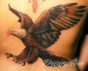 witam.. mam tatuaz orła na...