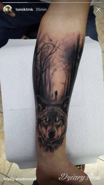 Mój Pierwszy Tatuaż Wilk Tatuaże Forum