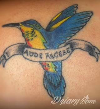 Tatuaże koliber