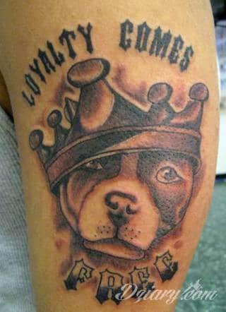 Tatuaże z psami to podkreślenie swojego przywiązania do danej rasy ;psie grafiki na skórze są zazwyczaj lekkie, nieco humorystyczne i okraszone często imieniem ulubionego zwierzęcia z przeszłości. W efekcie tatuaże z psami mogą stanowić idealną pamiątkę na lata.