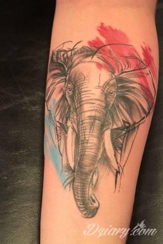 Wzory Tatuaży Słoń Inspiracje Z Kategorii Tatuaże Słoń