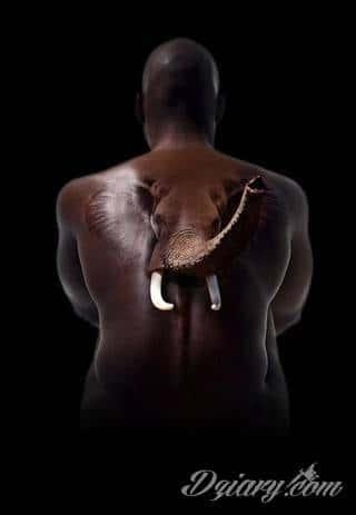 Siła, moc, wytrwałość - wszystko to symbolizują tatuaże ze wzorem słonia. Tego typu grafiki mają jednak dodatkowe znaczenie. Słoń na tatuażu symbolizuje również dążenie do szczęścia. Ciekawą opcją są grafiki, na których część słonia zostaje wkomponowana w ludzkie ciało.