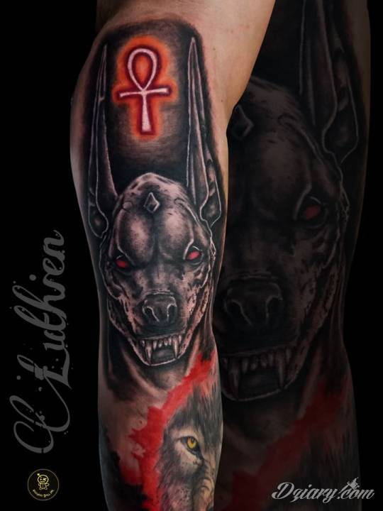 Tatuaż Anubis w kolorze
