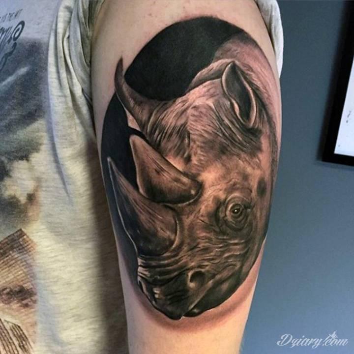Tatuaż Czarnobiały nosorożec na...