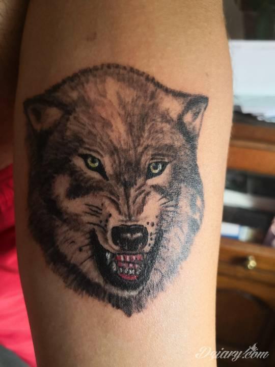 Tatuaż Cześć Co sądzicie...