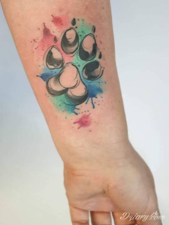 Tatuaż Łapka mojego psa...