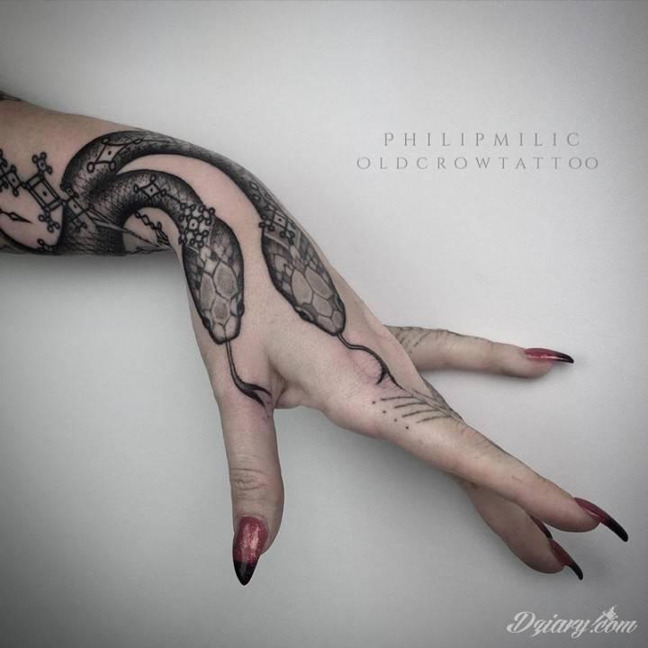 Niech Twoja ręka będzie wężem, którego jad zawładnie wszystkim, czego dotykasz.