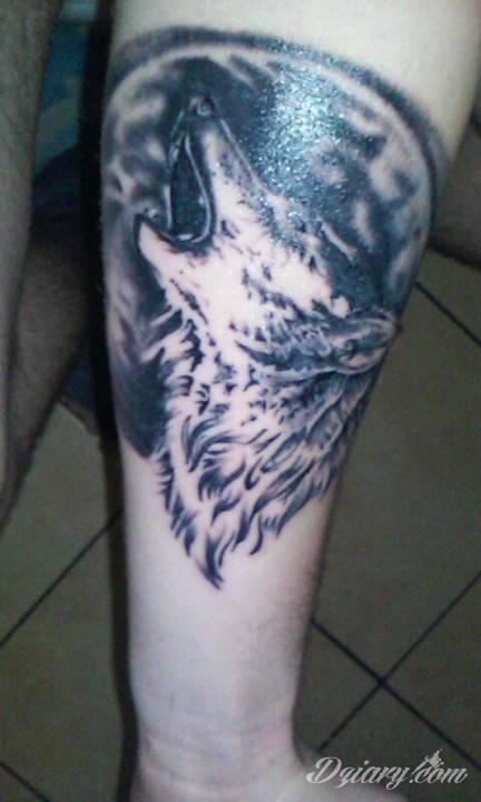 Pierwszy tatuaz :) wilk