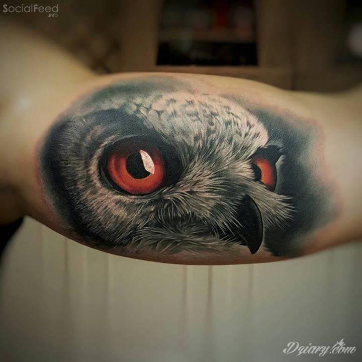 Realistyczny Tatuaż Sowy Autor Csörsz Pèter