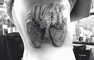 Anatomiczne serca ze szkicownika Leonarda da Vinci.
