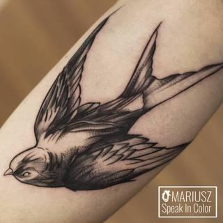 Tatuaże Jaskolka Wzory I Galeria Tatuaży
