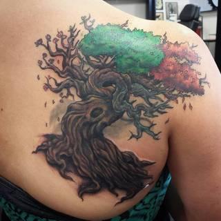 Kolorowy tatuaż drzewa na łopatce.