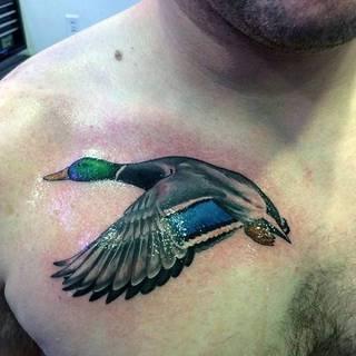 Kolorowy tatuaż kaczki na klatce piersiowej.