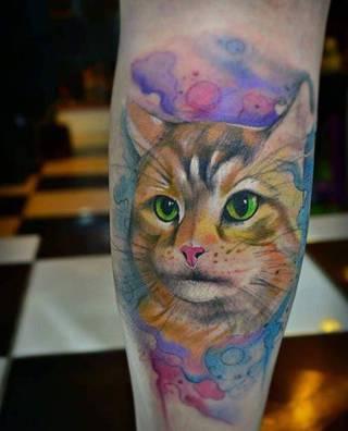 Kot z zielonymi oczami.