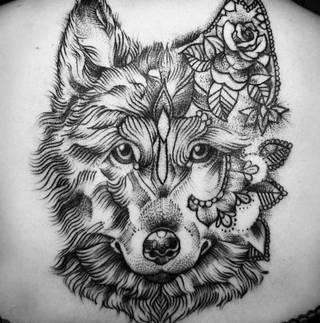 taki wilczek
