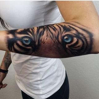 Tygrys na przedramieniu
