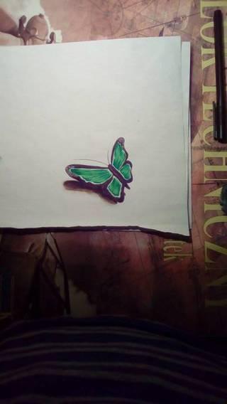 zielony motylek ;)