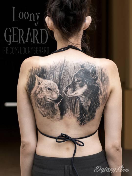 Tatuaż Wilki wykonane na...